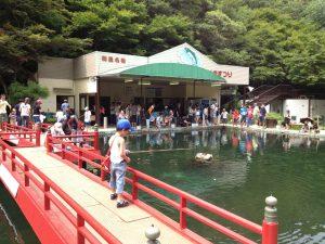 ます池写真